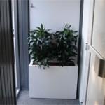 Restauratie hal sauna